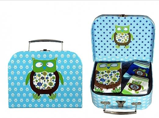 baby owl set