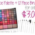 Palette & Brush Set for Only $3!