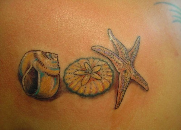 Seashell-Tattoos-For-Women-600x432