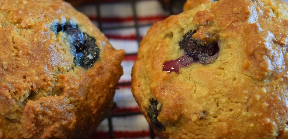 Low Carb Diet Blueberry Muffins, NSNG, Paleo, Gluten Free
