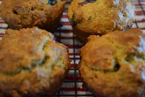 Awesome Diet Blueberry Muffins, Low Carb, Gluten Free, 21 Day Fix Approved